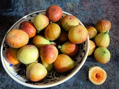 fresh figs (Just Back) Tags: fig ficus sweet skin soft pedicel moraceae botany dessert turkish bowl