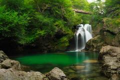 um Waterfall, Bled Vintgar gorge, Slovenia (Dejan Hudoletnjak) Tags: umwaterfall bledvintgargorge slovenia waterfall landscape bled green smooth silky long longexposure
