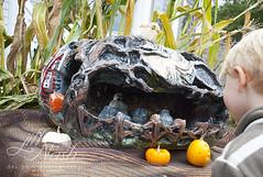 Creepy graveyard pumpkin (grilljam) Tags: pumpkinfest damariscotta autumn october2016 seamus 4yrs graveyardscene pumpkin intricatecarvings thiswasmyfav