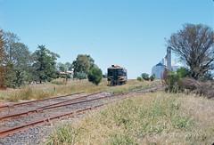 7703K-01 (Geelong & South Western Rail Heritage Society) Tags: aus australia derm dookie rta victoria