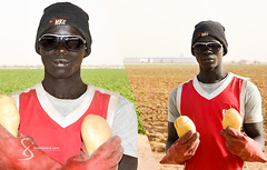 """Senegalese worker 