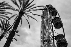 Spectrum Mall (Lake Effect) Tags: california bw monochrome mall flickr spectrum palmtree ferriswheel irvine 2014