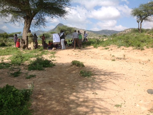 ISTVS data collection from the PRA questionnaire in Hulq  (Somaliland) with male community members