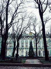 Hermitage (miemo) Tags: travel trees winter stpetersburg europe russia olympus christmastree hermitage winterpalace omd innercourtyard ermitazh em5 panasonic1235mmf28
