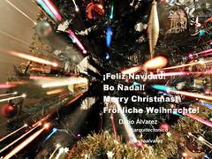 Vier_Warp_12_DSCN1961 (darioalvarez) Tags: christmas navidad bo merry nadal frhliche feliz weihnachte