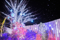 bubbles /  (ke.fzzy) Tags: park japan bubble  osaka  hirakata