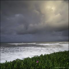 Luz para mi flor... (eredita) Tags: costa mar agua tormenta invierno fondodeescritorio ribadeo cantbrico eredita maragitada fernnan