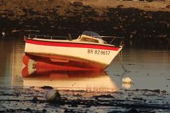 IMG_5299 (Paul.V_BZH) Tags: sea mer france soleil couleurs bretagne bateau finistère océan littoral argenton porspoder borddemer iroise landunvez