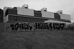 tomek horf hueso (lepublicnme) Tags: bw white paris france graffiti back noir january nb hueso pal blanc tomek 2015 horf horfe horph horphe palcrew