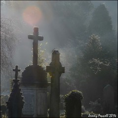 Arno's Vale (zolaczakl) Tags: uk trees winter england cemetery grave graveyard bristol frost december cross victorian gravestones arnosvalecemetery brislington nikond7100 photographybyjeremyfennell decemberinarnosvalecemetery gradeiiregistered