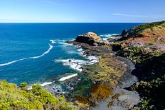 Cape Schanck (Shane_Henderson) Tags: ocean bird beach rocks au australia victoria fujifilm morningtonpeninsula xseries capeschanck bassstrait fujinonlensxf1855mmf284rlmois fujifilmxe2