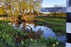 Day #3043 (cazphoto.co.uk) Tags: reflection tree lumix pond panasonic signpost staplefordtawney project366 2300416 dmcgh3 panasonic1235mmf28lumixgxvarioasphpowerois beyond2922