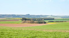 08052016-_DSC0041 (vidjanma) Tags: paysage ardenne frontire moinet troine