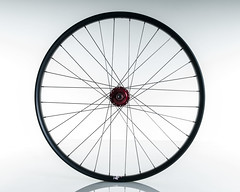 Velocity_Dually_Profile_Front (Cycle Monkey USA) Tags: trail riding mtb trailriding customwheels profileracing velocityusa