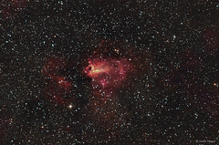 The Swan Nebula (M17) (Martin_Heigan) Tags: omeganebula swannebula m17 messier17 sagittarius star stars opencluster ngc6618 hii milkyway nebula astronomy astrophysics astrograph telescope newtonian reflector celestron avx hydrogen deepsky dso space science physics canon 60da mhastrophoto deepskyobject ha 1may2016 southafrica southernafrica africa southernhemisphere astrophotography southernskies iso6400 highiso universe cosmos astrometrydotnet:id=nova1559196 astrometrydotnet:status=solved ic4706 ic4707 astroimaging