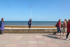 IMG_1941site2 (janohighway) Tags: summer sculpture art design seaside community selection environment choice recycling collective debate teignmouth outdoorart ecoart sculpturetrail devonuk womenartists trail2016