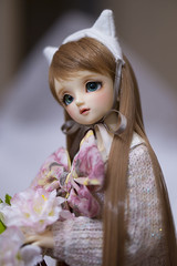 Coffee Milk (Muri Muri (Aridea)) Tags: cute doll may super bjd vs dollfie volks abjd msd sdc