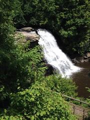 Swallow Falls SP (karma (Karen)) Tags: swallowfallssp garrettco maryland mdstateparks trees waterfalls trails fences cmwd iphone