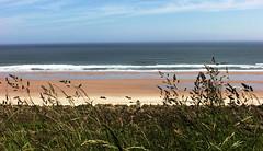 I just need some time ............. (Finding Chris) Tags: northumberland beach sand shoreline bamburghcastle seascape photoshop