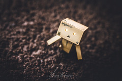 Hello Danbo (Michaela Rother) Tags: morning brown coffee germany nikon rainy danbo