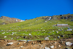 DSC_1919 (Amishrit) Tags: mountain snow rock forest garden landscape temple shimla flora nikon manali kulu chandigarh kufri rohtang hadimba d7100 vasista