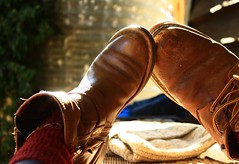 great mates will always have time for each other.... (dawn.tranter) Tags: light sunshine table shoes boots time mates eachother dawntranter