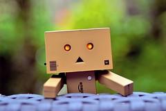 It's me! (RolandHut) Tags: macro closeup garden toy toys outdoors nikon outdoor surprise danbo d5100 nikond5100