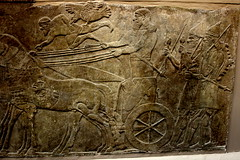Assyrian Chariot (austexican718) Tags: horse history archaeology stone ancient war king carving monarch chariot basrelief assyrian