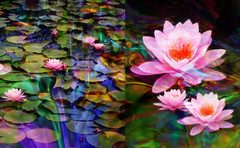 Still Waters (abstractartangel77) Tags: water gardens diptych waterlily herstmonceux