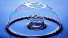 bubble drop (jjays7155) Tags: waterdrop bubbles sigma105mm macromondays eos600d