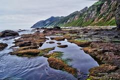 .  Low tide (Tatters ) Tags: sakhalin russia tikhaya beach seaweed   2012 shore coast water oloneo ebb tide