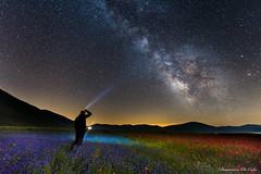 Osservando le stelle Castelluccio di Norcia (Domenico Di Cola) Tags: park parco night way via national milky monti castelluccio nazionale sibillini fioritura nighscape notturni lenticchie lattea