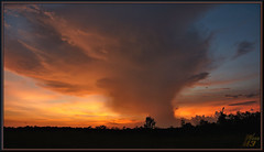 The mushroom cloud (WanaM3) Tags: wanam3 sony a700 sonya700 texas houston elfrancoleepark park sunlight vista twiligth civiltwilight sky