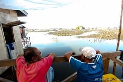 IMG_0074 (susancorpuz90) Tags: indigenouspeople samal tausug zamboanga riohondo