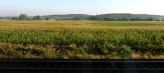 Hanau to Hamburg, Germany (asterisktom) Tags: 2016 trip2016kazakheuro july germany