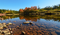 Autumn Reflections Upon Salmon River (TheNovaScotian1991) Tags: nikond3200 tokina1116mmdxii ultrawideangle salmonriver truro colchestercounty novascotia canada maritimes waterreflections autumncolors fall rocks pebbles stillwater trees forest cliffs