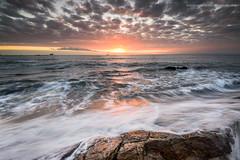 Path of Gold (Damon Finlay) Tags: nikon d750 nikond750 nikkor 1635mm f4 nikkor1635mmf4 seafield kirkcaldy fife coast seascape rocks water movement watermovement firth forth firthofforth scotland dawn sunrise
