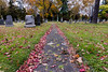 (dicksoto) Tags: nyc red ny newyork green fall grass leaves brooklyn unitedstates autum greenwoodcemetery path graves tombstones
