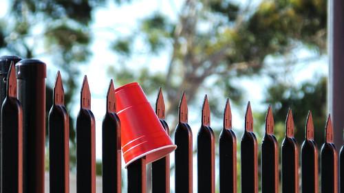 Unintentionally Festive Fence