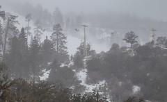 Foggy Storm