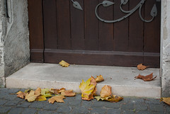 Church door... (markus_langlotz) Tags: door autumn art church leaves pentax laub herbst kirche regensburg bltter ratisbon tr churchdoor kirchentr ratisbona pentaxart dominikanaerkirche