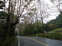 201206 (oneroadlucky) Tags: park plant tree fall grass landscape autum