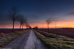 Red dawn (cesco.pb) Tags: italy sunrise canon dawn momo italia alba piemonte ricefield risaia novara canoneos60d tamronsp1750mmf28xrdiiivcld