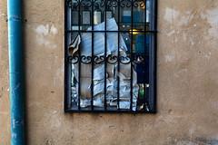 Behind bars (Poupetta) Tags: window wall bars bottles pipe cardboard yaffo 115picturesin2015