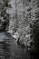 20141127067741 (koppomcolors) Tags: winter water forest vinter sweden skog sverige scandinavia vatten värmland varmland koppomcolors