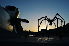 Late afternoon in the Guggenheim (jone.ortega) Tags: sun nikon afternoon bilbao guggenheim nikond3100