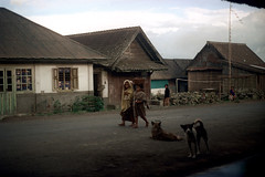 24-656 (ndpa / s. lundeen, archivist) Tags: road houses girls people bali dog color film dogs girl animals rural 35mm buildings children indonesia town village child basket nick southpacific barefoot balance 24 dirtroad 1970s 1972 balancing indonesian carry carrying balinese dewolf oceania pacificislands nickdewolf photographbynickdewolf onherhead reel24