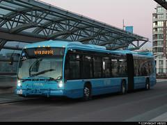 Viva #1394 (vb5215's Transportation Gallery) Tags: york bus nova transit region viva artic lfs yrt 2013