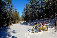 Waha Snow Ride (Doug Goodenough) Tags: surly pugsley fatbike fat bike bicycle ride snow winter pedals spokes waha november nov 2014 14 drg53114 drg53114p idaho drg531ppugsley drg531