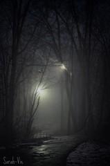 (Sarah-Vie) Tags: nuit brouillard peur dsc0632 fabuleuse soirdebrouillard